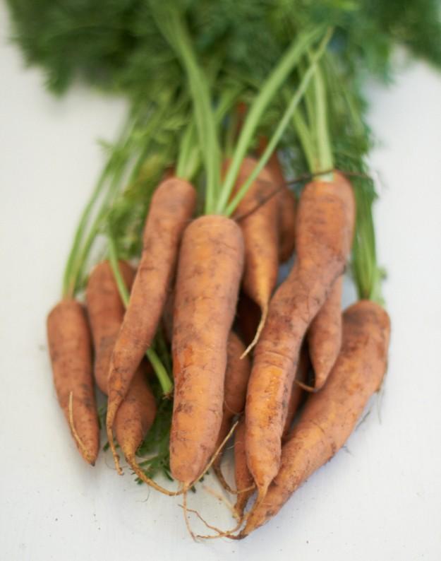 möhrenquiche tastesheriff Quiche Möhren Karotten