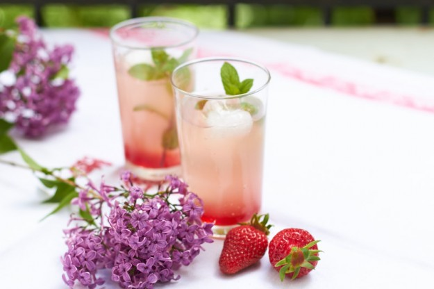Erdbeer-Rhabarber-Brause - tastesheriff.com