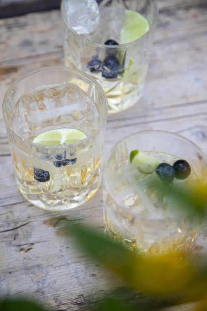 Das perfekte Getränk für einen warmen Sommerabend mit Freunden - ein alkoholfreier Wermuth-Drink!